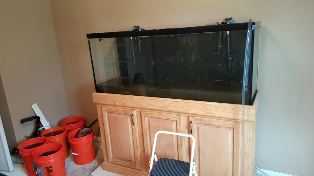 Click image for larger version  Name:4 tank empty.jpg Views:77 Size:48.3 KB ID:704626