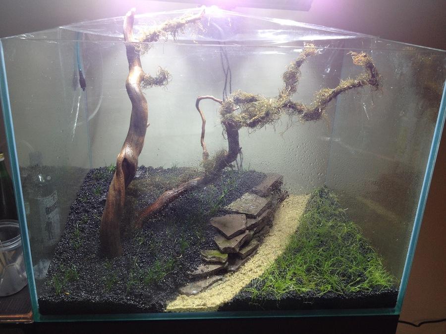 Diy aquarium substrate dividers diy do it your self for Fish tank dividers