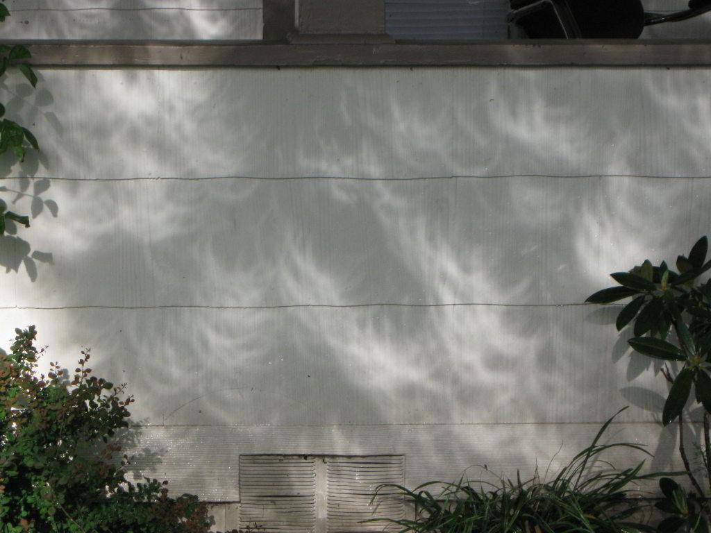Click image for larger version  Name:annular eclipse 2.jpg Views:20 Size:96.0 KB ID:47853