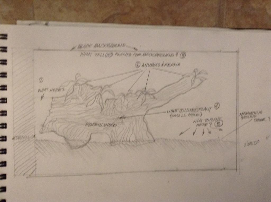 Click image for larger version  Name:Aquarium plan.jpg Views:257 Size:63.0 KB ID:399826