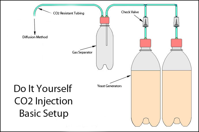 DIY CO2 For Dummies? - The Planted Tank Forum