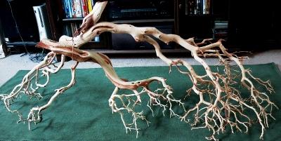 Name:  Driftwood(400x201).jpg Views: 4261 Size:  102.9 KB