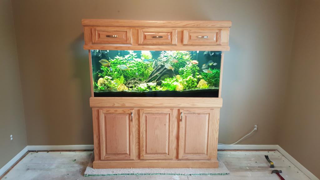 Click image for larger version  Name:Floor Full Tank.jpg Views:70 Size:56.5 KB ID:704114