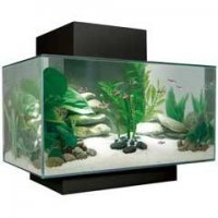 Name:  fluval.jpg