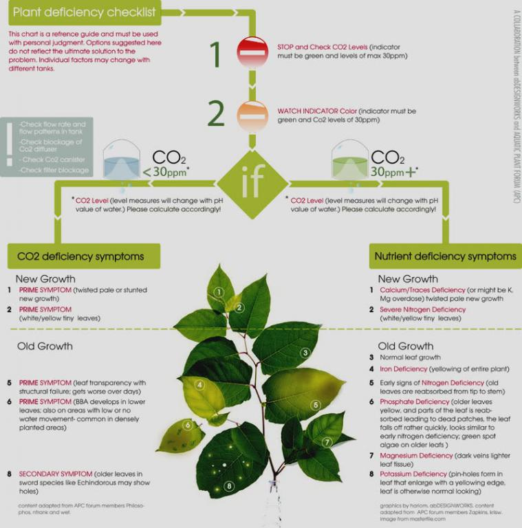 Click image for larger version  Name:plant chart .jpg Views:115 Size:76.1 KB ID:323186